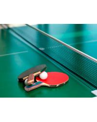 Как правильно выбирать теннисный стол